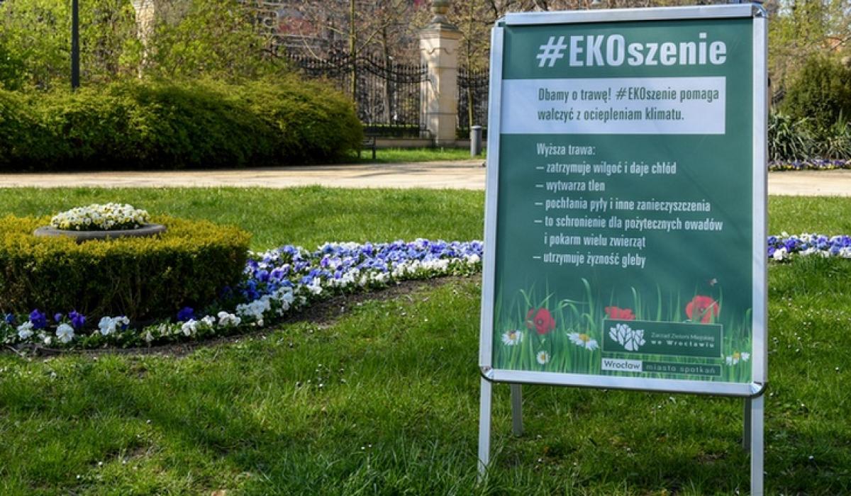 Wrocław kosi trawniki z myślą o ekologicznych korzyściach i zmianach klimatu