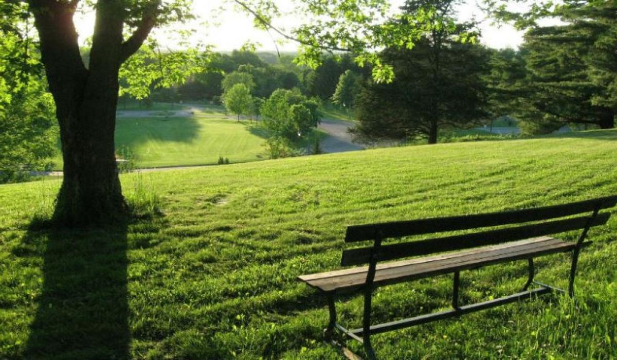 Wrocławski park