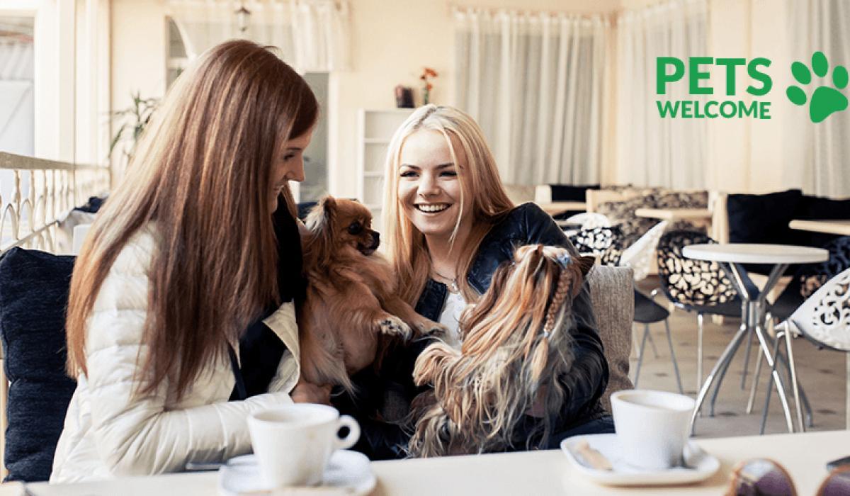 Pets Welcome - miejsca przyjazne zwierzętom we Wrocławiu