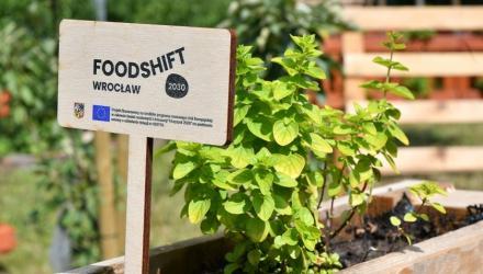 FoodSHIFT 2030 - ogrody warzywne w placówkach edukacyjnych