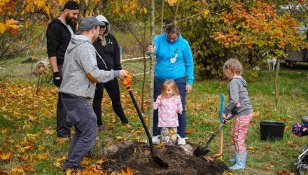 Sadzenie drzew podczas jesiennej edycji WROśnij we WROcław w 2019 r.