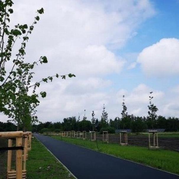 Przy ul. Zajączkowskiej powstaje nowy ciąg pieszo-rowerowy