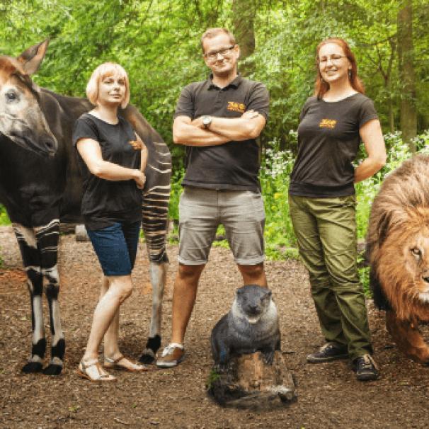 Wracają wycieczki z przewodnikiem w Zoo Wrocław