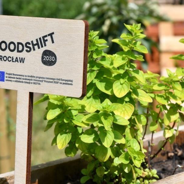 FoodSHIFT 2030 – szkolne ogrody obrodziły [WIDEO]