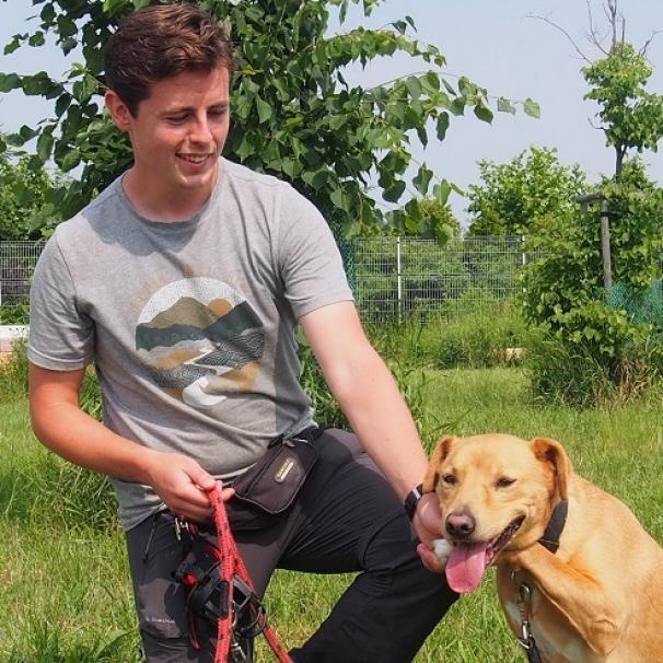 Psi terapeuta we wrocławskim schronisku