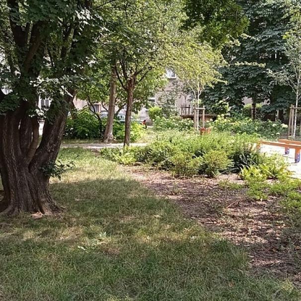 Z podwórek na Ołbinie znikną klepiska. Kolejny etap projektu Grow Green